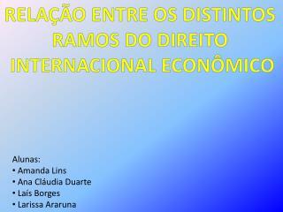 RELAÇÃO ENTRE OS DISTINTOS  RAMOS  DO DIREITO  INTERNACIONAL ECONÔMICO
