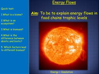 Energy Flows Aim : To be to explain energy flows in food chains trophic levels