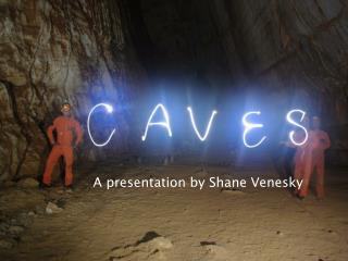 A presentation by Shane  Venesky