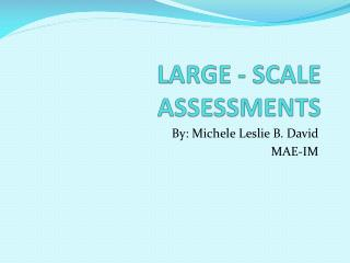 LARGE - SCALE ASSESSMENTS