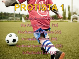 PROTISTA 1