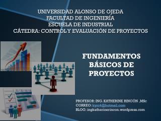FUNDAMENTOS BÁSICOS DE PROYECTOS