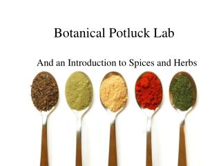 Botanical Potluck Lab