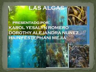 Distribución  de algas