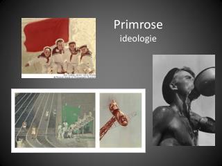 Primrose ideologie