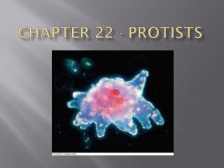 Chapter 22 - Protists