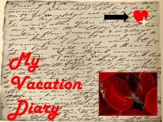 My  Vacation Diary