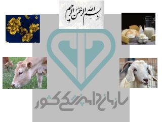 Vaccination Program Sheep  Goats