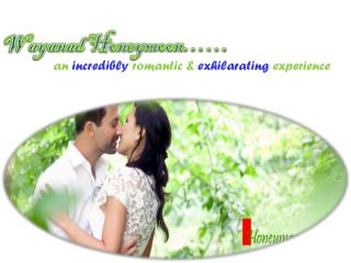 Wayanad - An Ideal Honeymoon Destination in Kerala