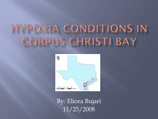 Hypoxia Conditions in Corpus Christi Bay