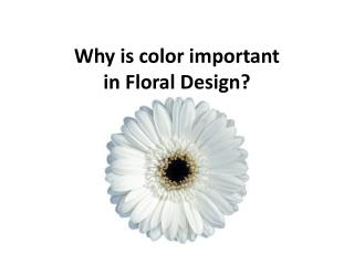 Why is color important  in Floral Design?