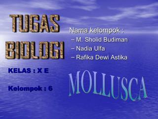 Nama kelompok  : M.  Sholid Budiman Nadia  Ulfa Rafika Dewi Astika