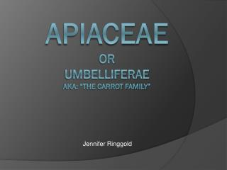 "Apiaceae or UmbelliferAe Aka: ""The Carrot Family"""