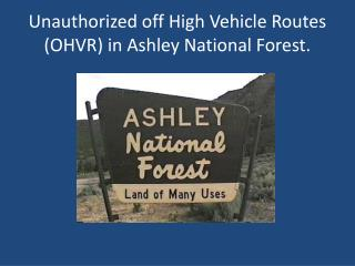 Unauthorized off High Vehicle Routes (OHVR) in Ashley National Forest.