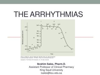 The Arrhythmias