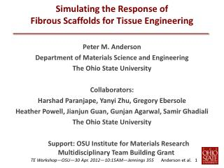 Simulating the Response of Fibrous Scaffolds for Tissue Engineering