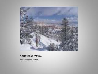 Chapitre  14 Mots 1