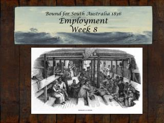 Bound for South Australia 1836 Employment  Week 8