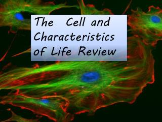 The  Cell and Characteristics of Life Review