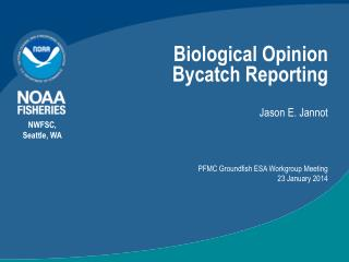Biological Opinion Bycatch Reporting