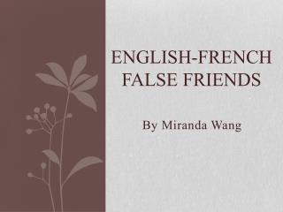 English-French False Friends