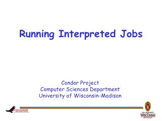 Running Interpreted Jobs