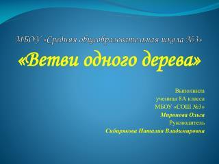 МБОУ «Средняя общеобразовательная школа №3»