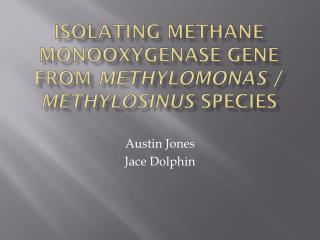 Isolating methane  monooxygenase  gene from  methylomonas  / Methylosinus species
