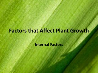Factors that Affect Plant Growth