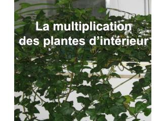 La multiplication des plantes d