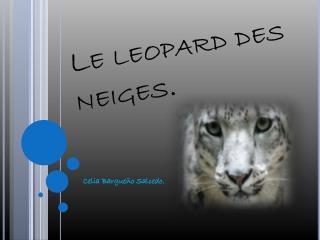 Le leopard des neiges.