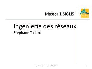 Master 1 SIGLIS
