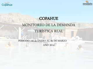 COPAHUE MONITOREO DE LA DEMANDA TURÍSTICA REAL PERIODO : 02 de ENERO AL 05 DE MARZO AÑO 2014