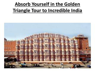 Absorb Yourself in the Golden Triangle Tour to Incredible In