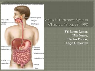 Group E: Digestive System Chapter. 48 pg. 984-992