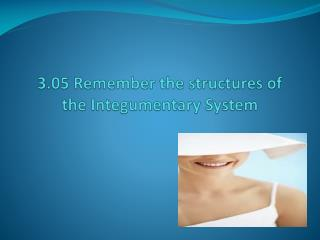3.05 Remember the structures of the Integumentary System