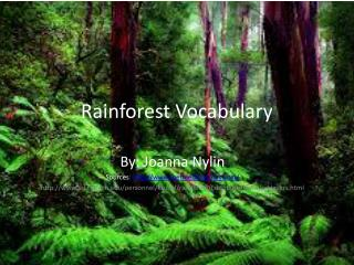 Rainforest Vocabulary