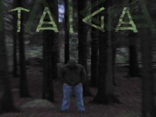 The Taiga  Forest