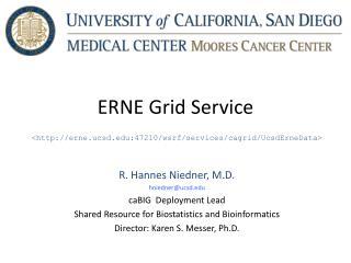 ERNE Grid Service