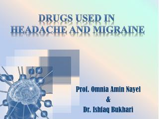 Prof.  Omnia Amin Nayel & Dr.  Ishfaq Bukhari