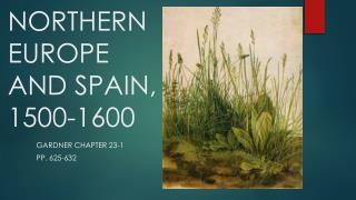 NORTHERN  EUROPE AND SPAIN, 1500-1600