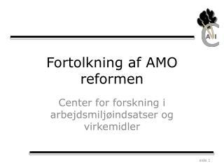 Fortolkning af AMO reformen