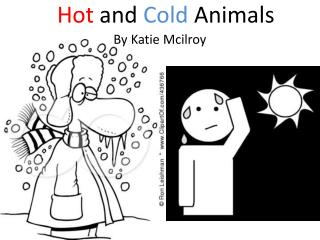Hot  and Cold  Animals