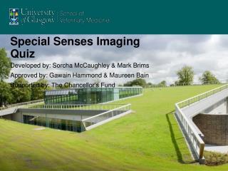 Special Senses Imaging Quiz