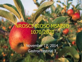 NROSCI-BIOSC-MSNBIO 1070/2070
