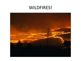 WILDFIRES!