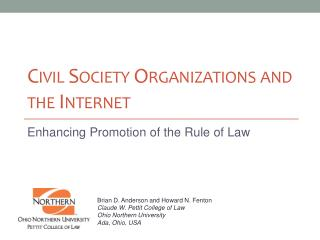 Civil Society Organizations and the Internet