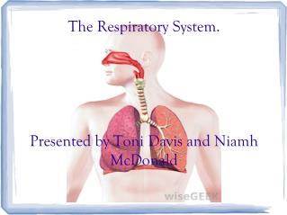 The Respiratory System.  Presented by Toni Davis and Niamh McDonald
