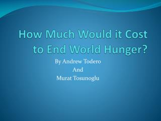 How Much Would it Cost to End World Hunger?