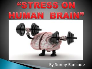 """STRESS ON HUMAN  BRAIN"""